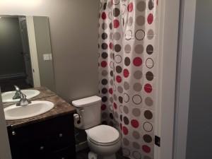 Crescent View Lower Bathroom