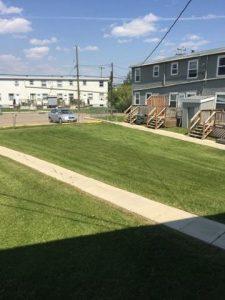 Parkview 1708 backyard
