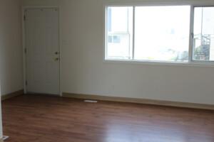 laminate livingroom